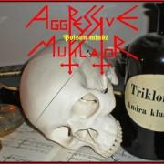 AGGRESSIVE MUTILATOR - CD - Poison Minds