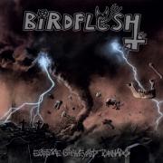 BIRDFLESH - 12'' LP - Extreme Graveyard Tornado (black Vinyl)