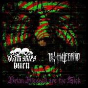 BLACK SKIES BURN / UK HATE GRIND - split CD - Brian Blessed Are The Sick