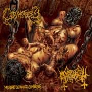 """CEPHALOTRIPSY / MEMBRO GENITALI BEFURCATOR -7"""" EP Split- """"Membro Cephalic Symbiosis"""""""