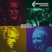 DISHARMONIC ORCHESTRA - 12'' LP - Raw