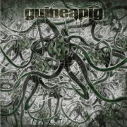 GUINEAPIG - Gatefold 12'' LP - Bacteria (Black vinyl)