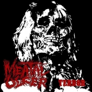 MEATAL ULCER - CD - Terror