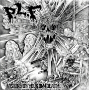 P.L.F. / IN DISGUST - split 12'' LP - Visions Of Your Own Death / Pray For Death