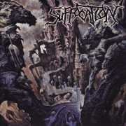 SUFFOCATION - 12'' LP - Souls To Deny  (black Vinyl)
