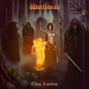 WOLFSHEAD -MCD- Caput Lupinum