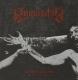 INQUISITOR - CD - Stigmata Me, I'm in Misery